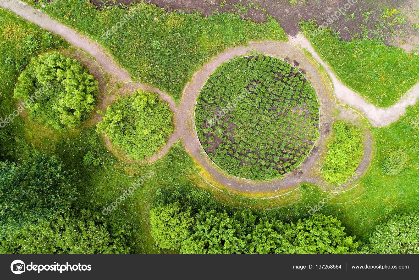 Letti Rotondi.Una Vista Dei Letti Rotondi Del Fiore Nel Parco Estate Foto Stock