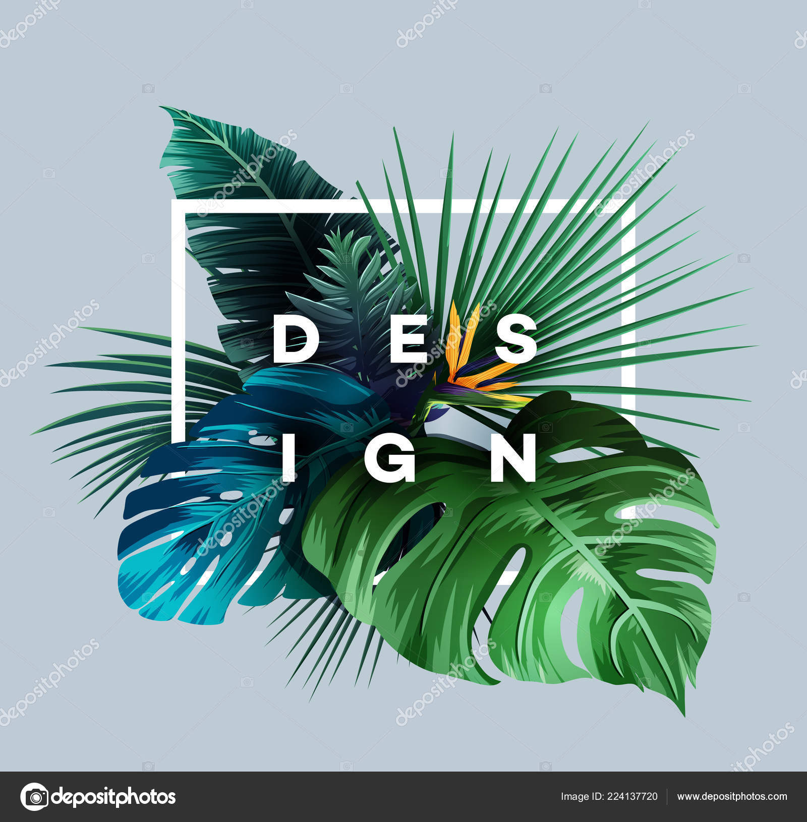 Bright Tropical Background Jungle Plants Exotic Pattern Palm Leaves Vector Stock Vector C Stotepic 224137720 Free vector drawn tropical fruits. https depositphotos com 224137720 stock illustration bright tropical background jungle plants html