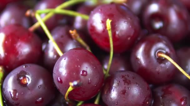 Close-up rotation of red ripe cherry fruit