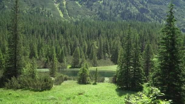 pohled na údolí horské řeky v pohoří Tatra