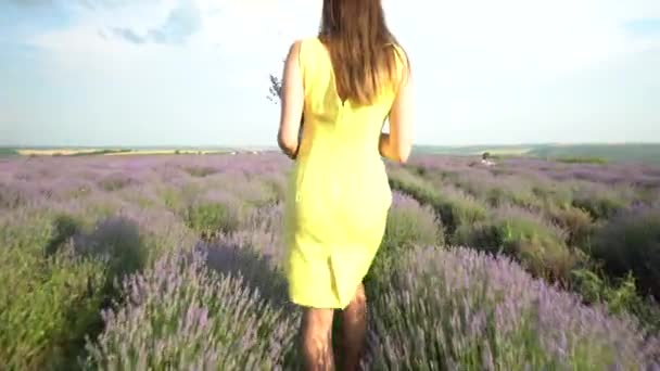 sexy girl on the lavender field