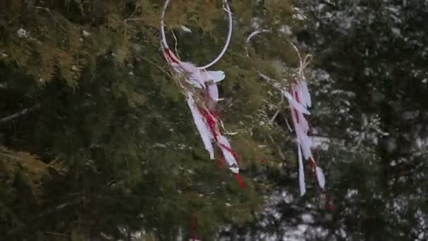 Strom zdobí věnce se stuhami v zimě