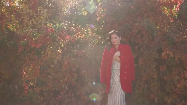 Portrait of a gorgeous girl in a dress and a red coat and in an autumn Park.