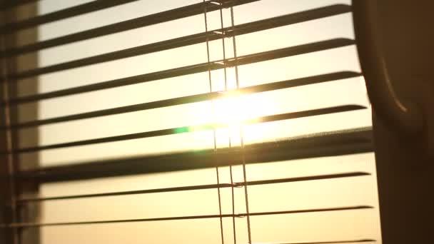 Východ slunce za okenní rolety a sítě proti hmyzu.