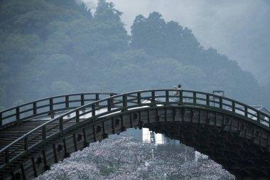Kintai Kyo bridge on rainy day, Iwakumi Hiroshima, japan