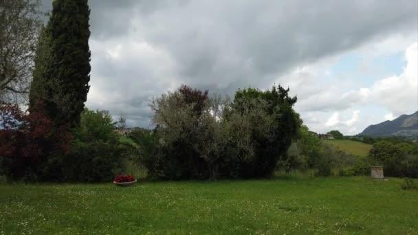 Land Bewegung Zeitraffer mit schönen Olivenbäumen und Zypressen in einer grünen Wiese und bewölkten Himmel