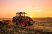 Fotografie Tractor working on the barley field by sunset.