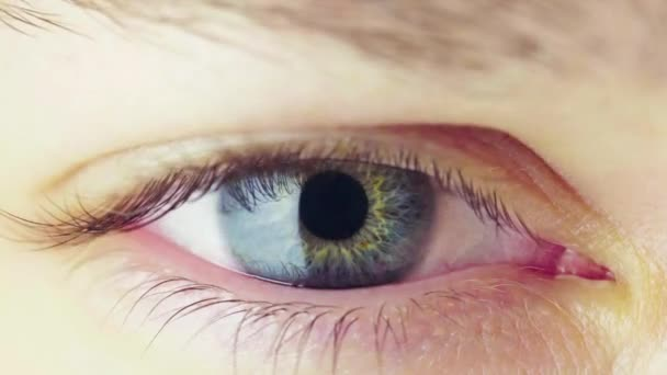 Macro View of Pupil Constriction Folyamat az emberi szemben. Az íriszek szembenállása a Fényes Fénnyel. Villogó Kék Női Szem. A szem pupilla munkája nagyobb mennyiségű fénnyel érintkezve.
