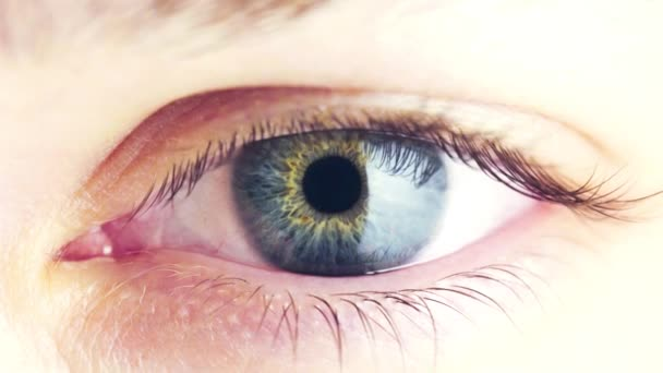 Makrosicht des Pupillenverengungsprozesses im menschlichen Auge. Verengung der Iris mit hellem Licht. blinkende blaue weibliche Augen. die Arbeit der Pupille im Kontakt mit einer größeren Menge Licht.