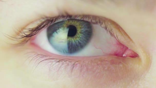 Krásné modré oko mladé ženy rozhlížející se kolem a mrkající. Proces zúžení zornic. Mrkající smyčka lidského oka