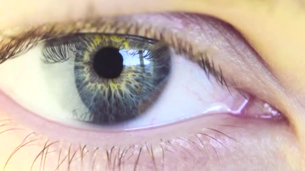 Blue Eye of a Beautiful Young Woman Looking Window. Sunny Day Outside the Window Reflected in Eyeball. Macro View