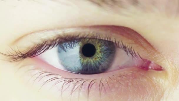 Krásné modré oko mladé ženy, otevírání a zavírání. Proces, zúžení zornice. Cyklických Video.