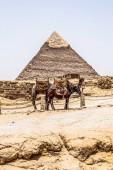 Velké pyramidy v Gíze poušť poblíž Káhiry v Egyptě památek UNESCO
