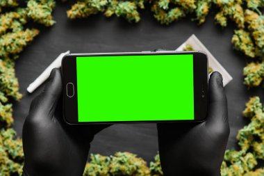 Black smartphone with green screen for chromakey and keying in hand. Weed, Grinder, lighter, joint A lot of marijuana, fresh buds of cannabis many weed. Copy spase Copy-space Top view
