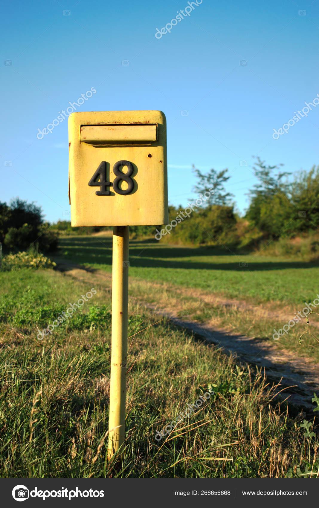 тенденция желтые почтовые ящики в барселоне фото очаровательные зверьки всей