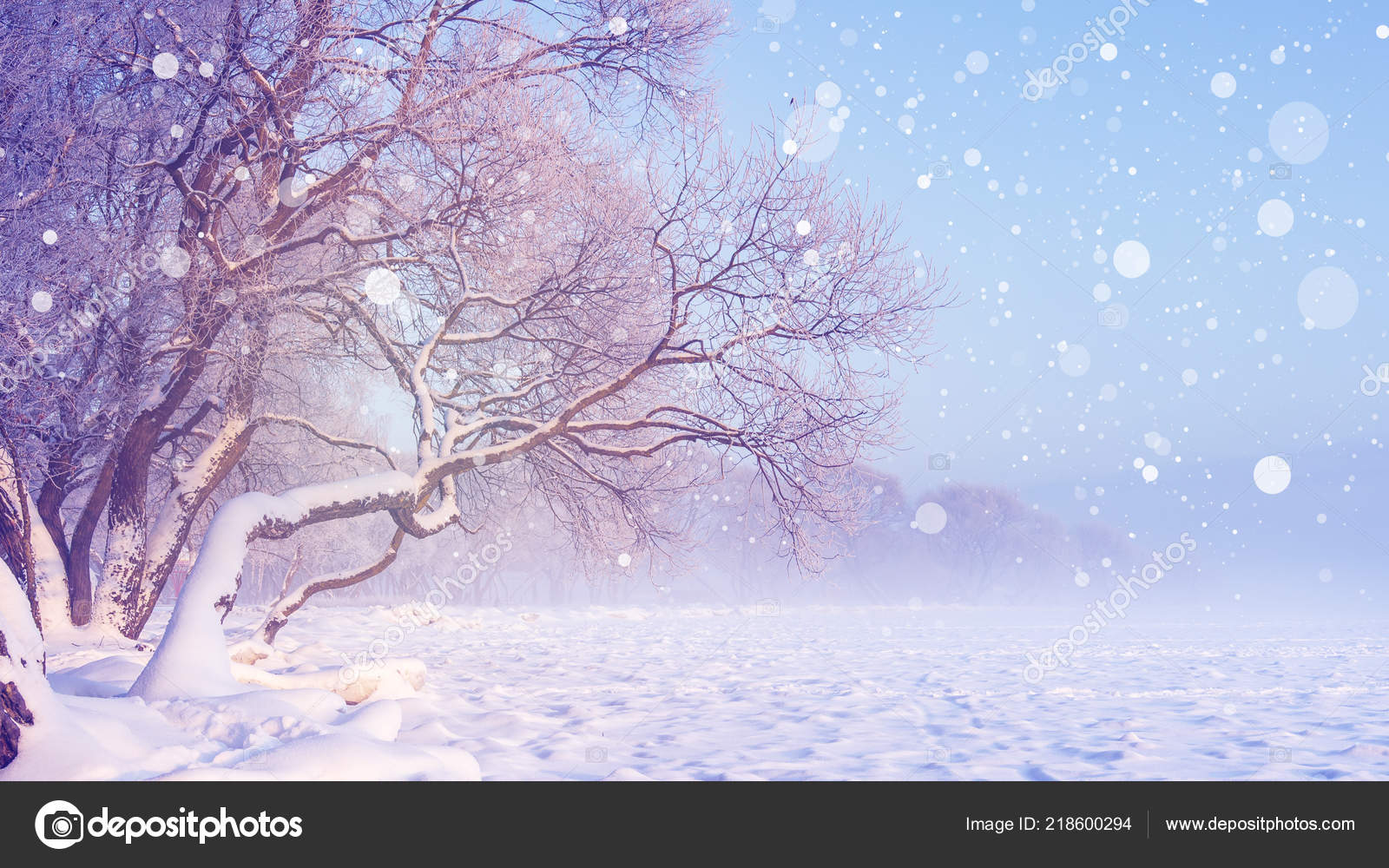 Snowing Christmas Scene.Winter Landscape In Snowfall Christmas Background Frosty