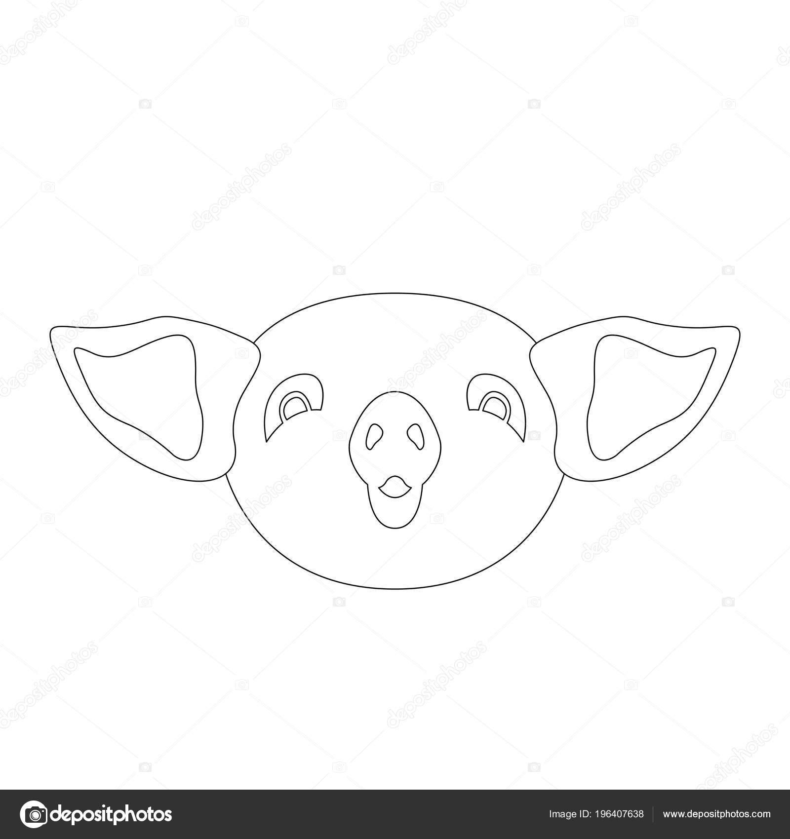 Ilustración Vector Cara Cerdo Para Colorear Parte Frontal Libro ...