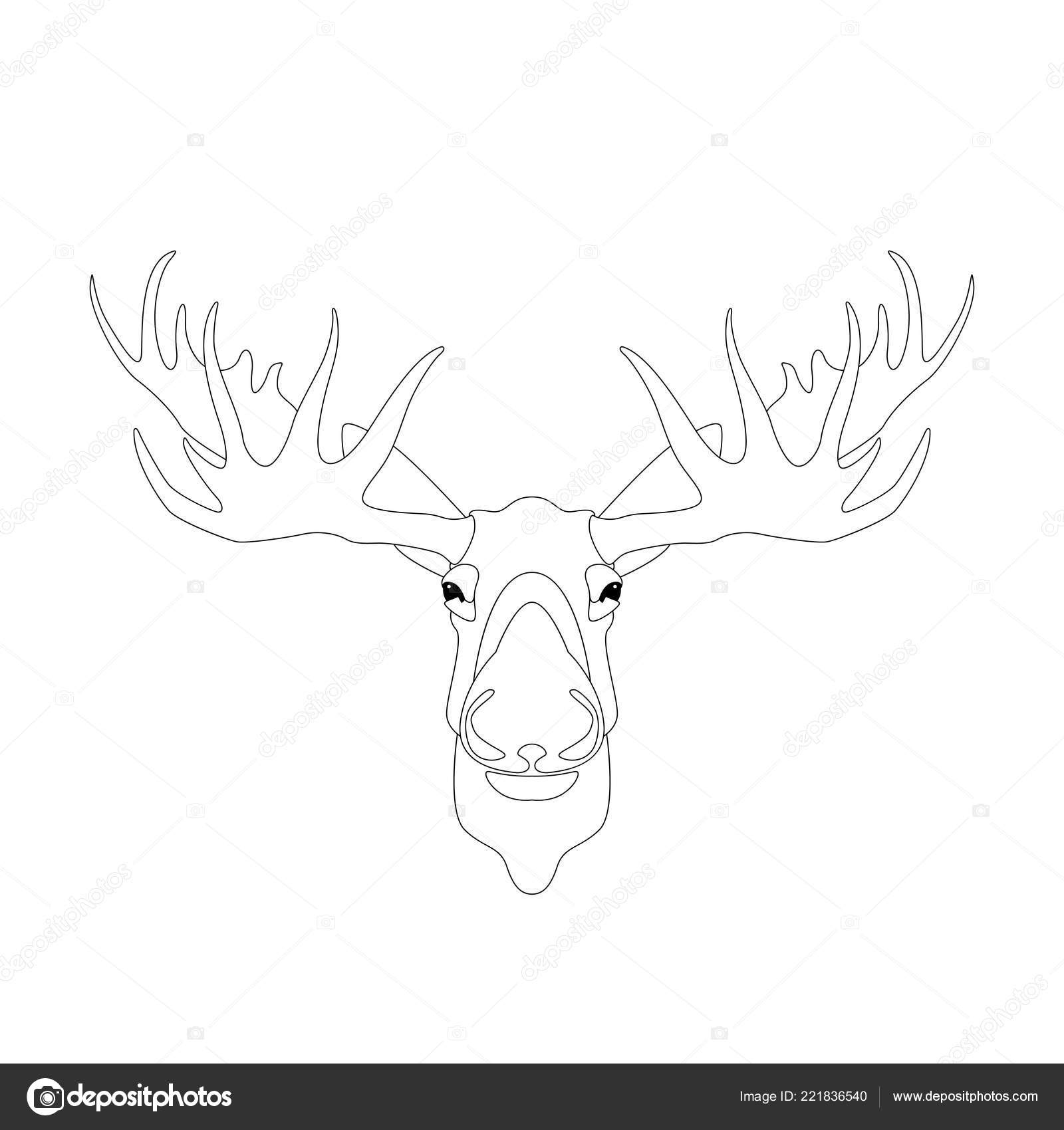 Deer head vector illustration lining draw front side vector by