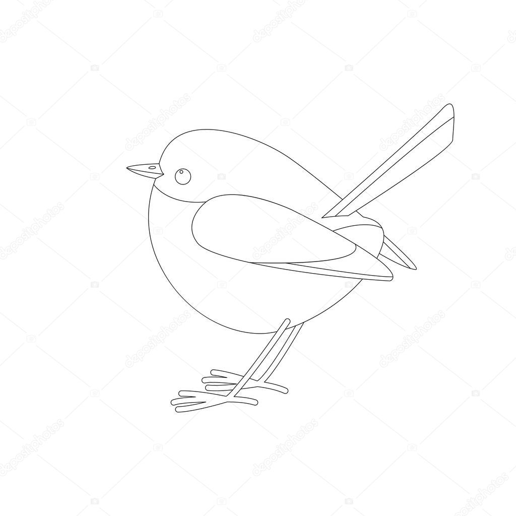 eastern bluebird  ,vector illustration ,lining draw ,profile