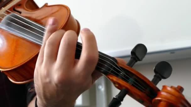 a musician plays a violin, classic turkish musicClose-up of musician playing violin, classic turkish music