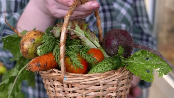 close-up footage of man holding basket with various ripe vegetables