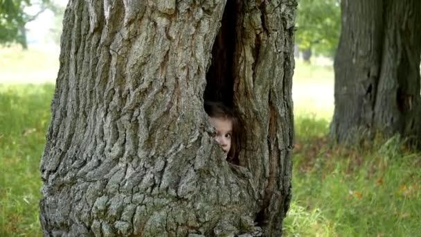Little kid girl hiding in a tree hollow