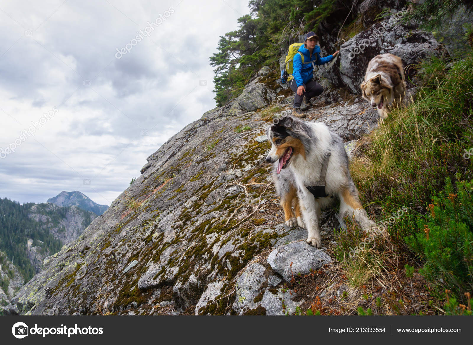 fbbfde102fa3 Girl Hiking Edge Cliff Dogs Cloudy Summer Day Taken Howe — Stock Photo
