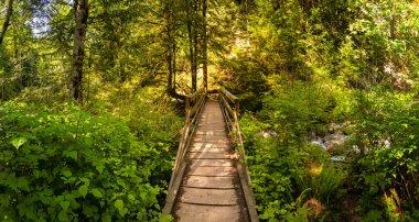 "Картина, постер, плакат, фотообои ""канадская природа москва города"", артикул 383249402"