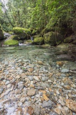 Beautiful Atlantic Rainforest waterfall landscape with crystal clear blue water in Serrinha Ecological Reserve, Rio de Janeiro, Brazil