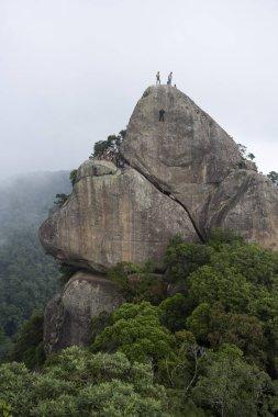 Rappel in rainforest mountain, Tijuca Forest, Rio de Janeiro, Brazil stock vector
