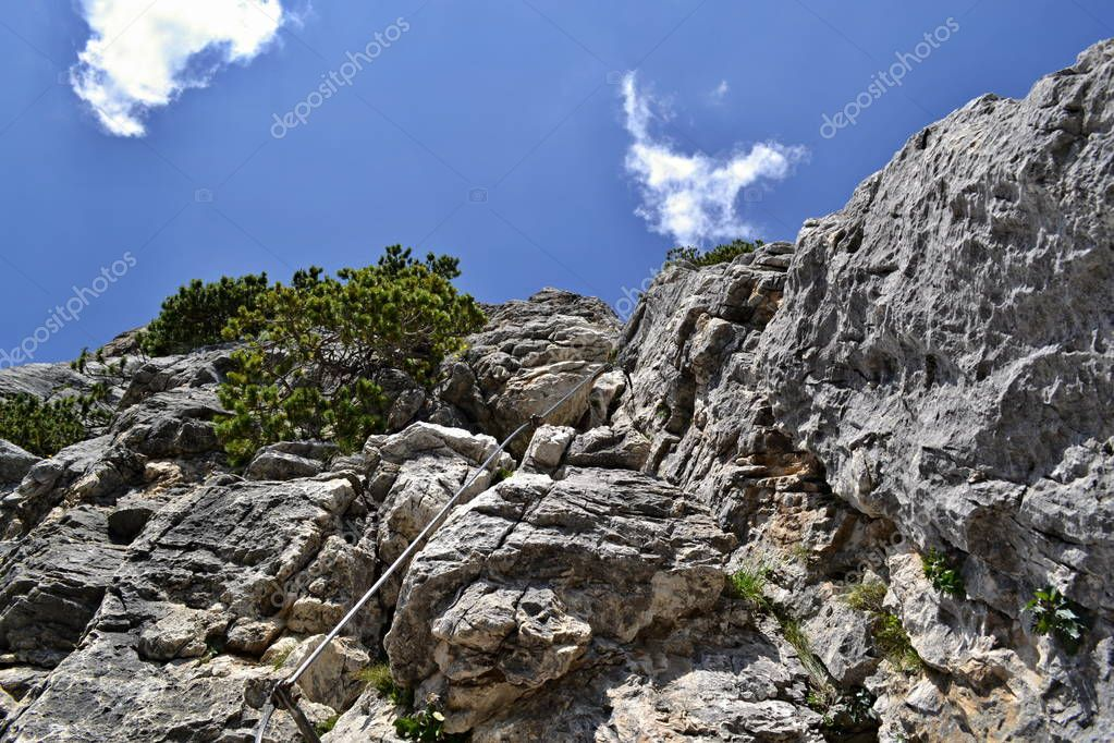 Look up on steel rope on a rock under blue sky. Steel rope is at a grey rock with green coniferous plants. Blues sky with some white clouds is on the top. Via Ferrata trail Bovero at the Col Rosa peak. Dolomite, Alps, Italy.