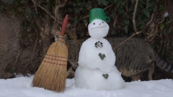 cirmos cica és a hóember