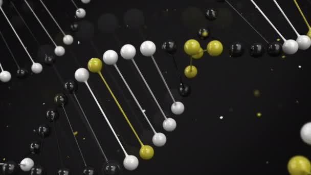 Lesklý model černé, bílé a žluté řetězec DNA na černém pozadí. Spirála Dna šroubovice. 3D vykreslování obrázku