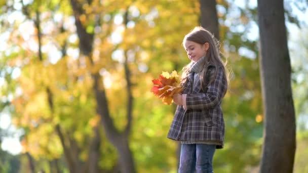 Glückliches Mädchen im Mantel spaziert durch einen sonnigen Herbstpark. Kind hält umgefallene gelbe Blätter in Händen Kinder entspannen unter freiem Himmel. Kindheitskonzept.