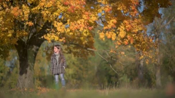 Glückliches Mädchen im Mantel spaziert durch einen sonnigen Herbstpark. Kinder entspannen unter freiem Himmel. Kindheitskonzept.
