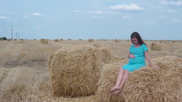 A pregnant girl in a blue dress and hat in a blue sky and a wheat field with sheaves of hay.