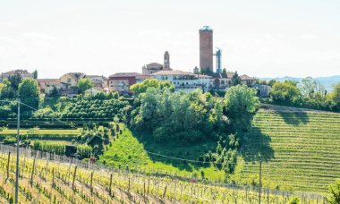 Landscape of langhe and the village of Barbaresco with its tower, Piedmont, Italy