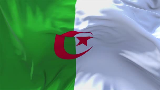 202. Algeria Flag Waving in Wind Continuous Seamless Loop Background.