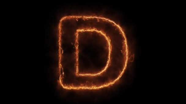 Alphabet D Word Hot Animated Burning Realistic Fire Flame Loop.