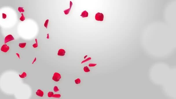 Random Rose szirmok fehér hurok háttér. Nagyszerű prezentációk, űrlapok, reklám.