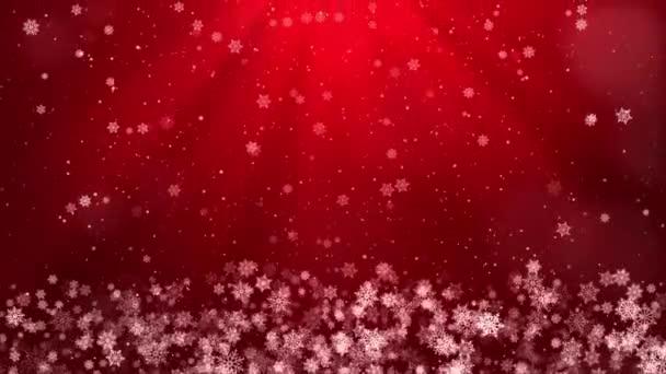 Abstrakt Létající sněhové vločky na světle červeném pozadí smyčky. Zimní sněhové vločky.