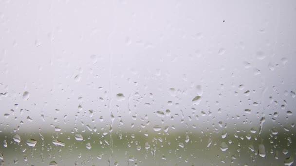 Gocce di pioggia che scendono su un vetro della finestra