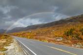 Norwegian road  landscape in autumn colors