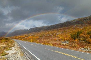 "Картина, постер, плакат, фотообои ""Норвежский пейзаж в осенние цвета "", артикул 219358806"