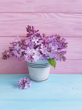 branch of a lilac flower on a blue wooden background, vase