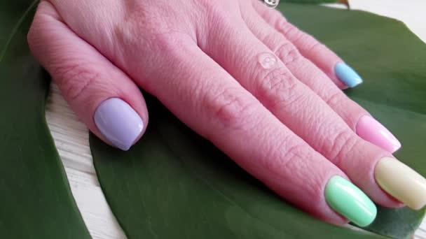 női kéz manikűr, lényegében csöpög Monstera