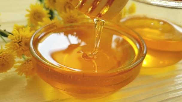 med, chryzantéum květ na dřevěné pozadí, pomalý pohyb