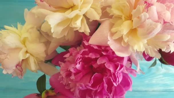 peoňový květ na dřevěném pozadí