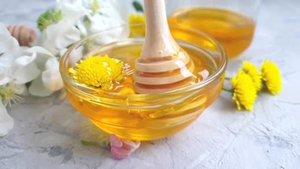 čerstvý med Kvetoucí třešeň Pampeliška pomalý pohyb