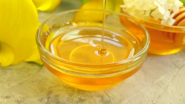 čerstvý med, hydratální květ na šedé betonové pozadí